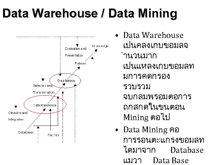 Data Warehouse / Data Mining • Data Warehouse เปนคลงเกบขอมลจ ำนวนมาก เปนแหลงเกบขอมลท มการคดกรอง รวบรวม จบกลมพรอมตอการ