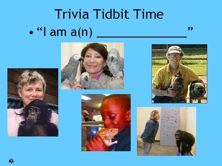 "Trivia Tidbit Time • ""I am a(n) _______"""