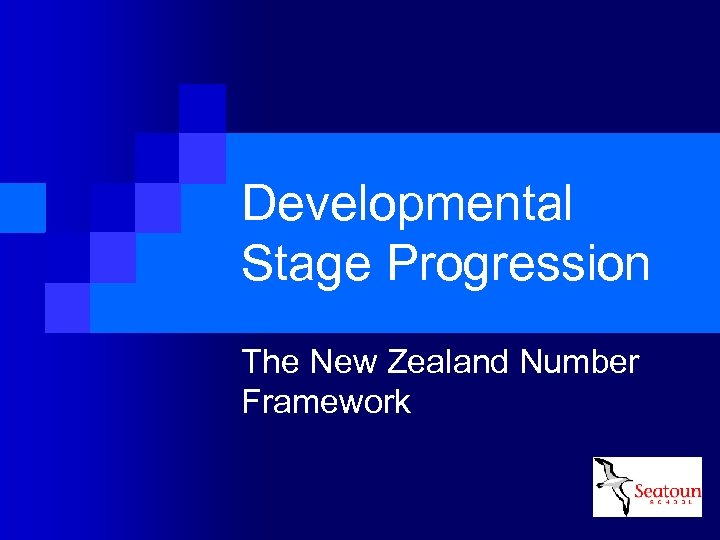 Developmental Stage Progression The New Zealand Number Framework