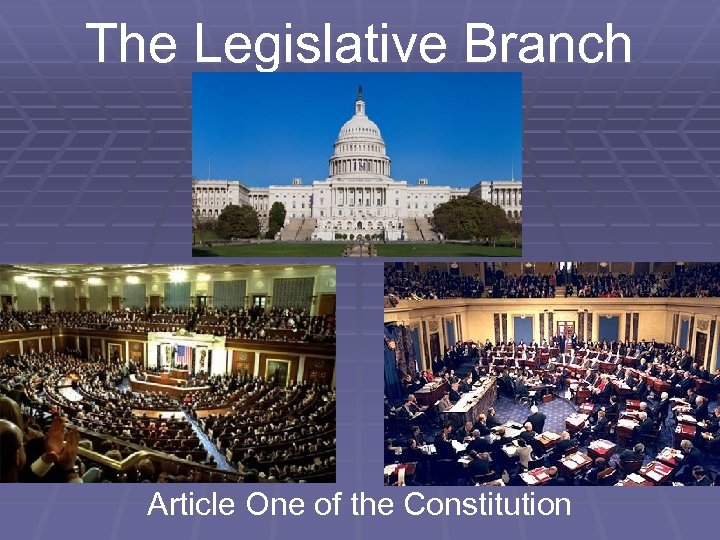 The Legislative Branch Article One of the Constitution