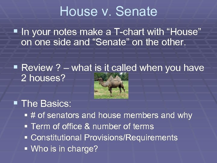"""House v. Senate § In your notes make a T-chart with """"House"""" on one"""