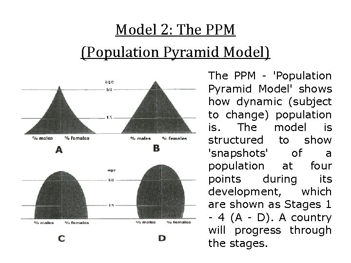 Model 2: The PPM (Population Pyramid Model) The PPM - 'Population Pyramid Model' shows