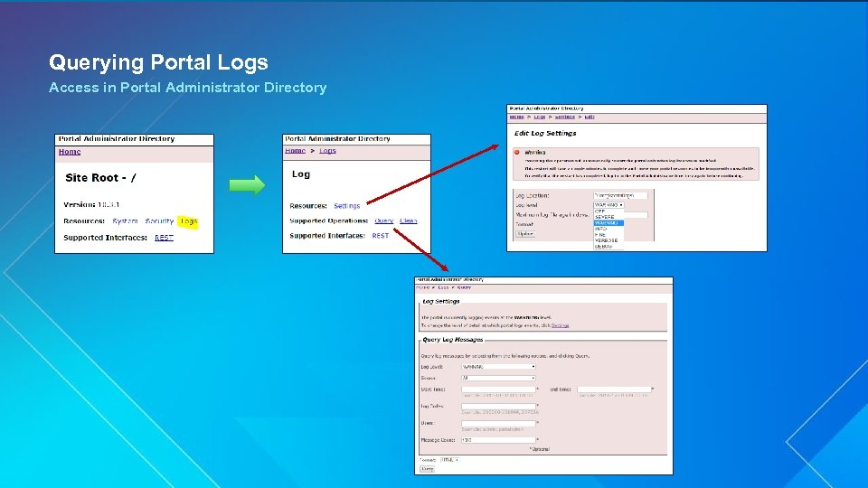 Querying Portal Logs Access in Portal Administrator Directory