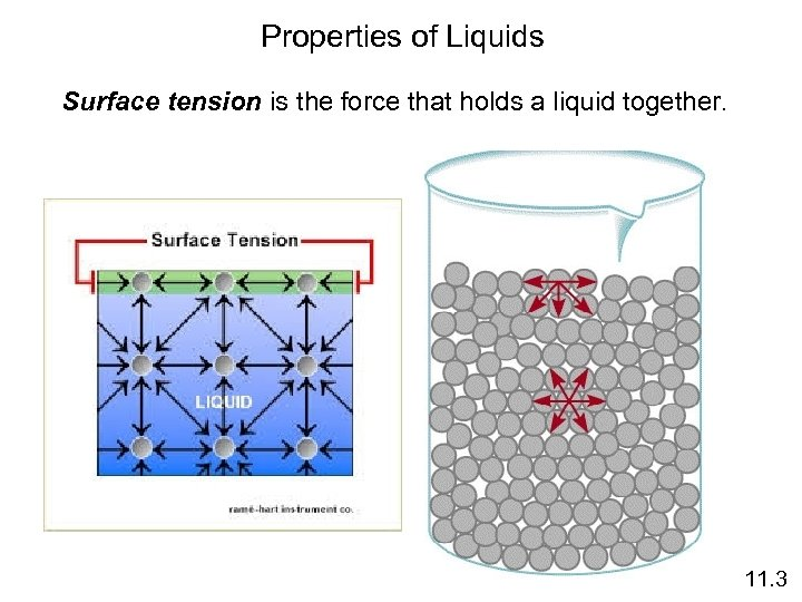 Properties of Liquids Surface tension is the force that holds a liquid together. 11.