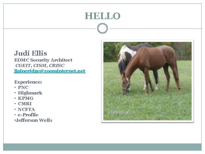 HELLO Judi Ellis EDMC Security Architect CGEIT, CISM, CRISC jjpineridge@zoominternet. net Experience: • PNC