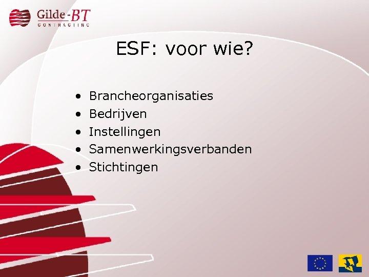 ESF: voor wie? • • • Brancheorganisaties Bedrijven Instellingen Samenwerkingsverbanden Stichtingen