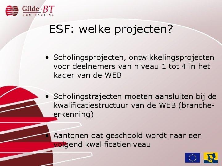 ESF: welke projecten? • Scholingsprojecten, ontwikkelingsprojecten voor deelnemers van niveau 1 tot 4 in
