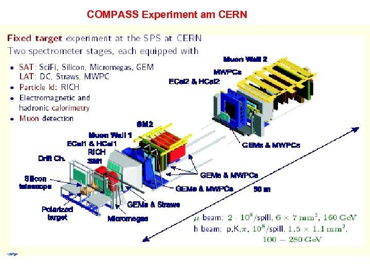 COMPASS Experiment am CERN