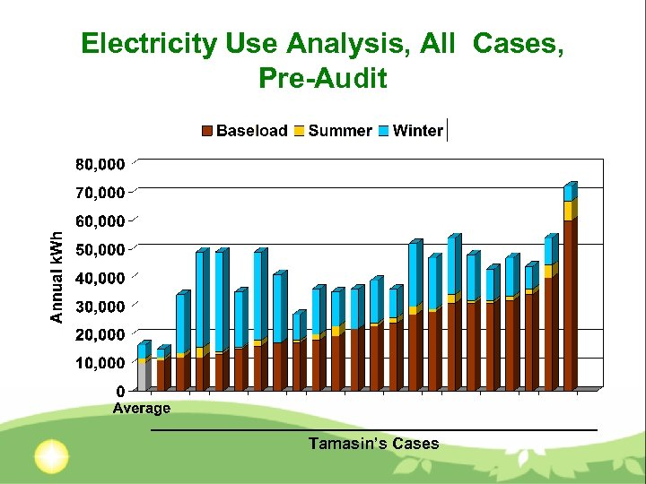 Electricity Use Analysis, All Cases, Pre-Audit Tamasin's Cases