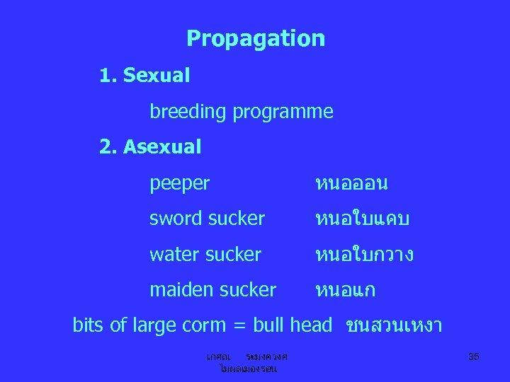 Propagation 1. Sexual breeding programme 2. Asexual peeper หนอออน sword sucker หนอใบแคบ water sucker
