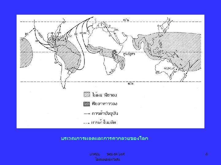บรเวณการผลตและการคากลวยของโลก เกศณ ระมงควงศ ไมผลเมองรอน 4