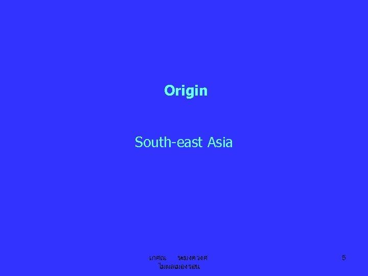 Origin South-east Asia เกศณ ระมงควงศ ไมผลเมองรอน 5