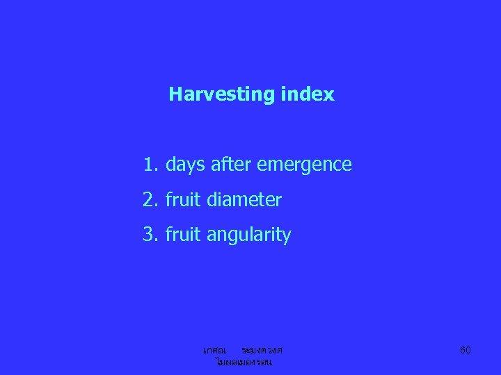 Harvesting index 1. days after emergence 2. fruit diameter 3. fruit angularity เกศณ ระมงควงศ
