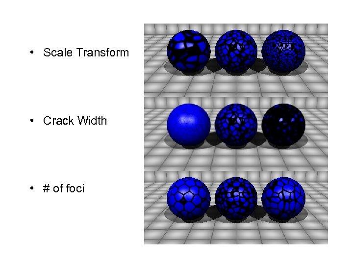• Scale Transform • Crack Width • # of foci