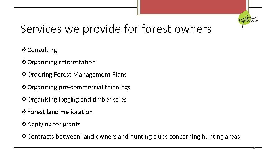 Services we provide forest owners Consulting Organising reforestation Ordering Forest Management Plans Organising pre-commercial