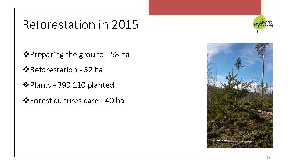Reforestation in 2015 Preparing the ground - 58 ha Reforestation - 52 ha Plants