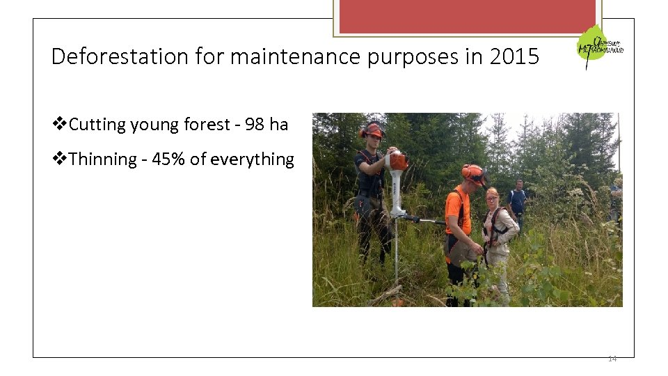 Deforestation for maintenance purposes in 2015 Cutting young forest - 98 ha Thinning -