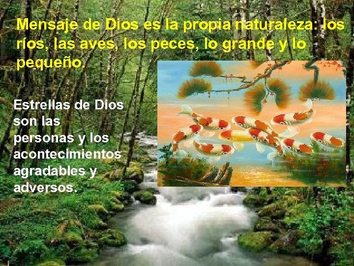Mensaje de Dios es la propia naturaleza: los ríos, las aves, los peces, lo