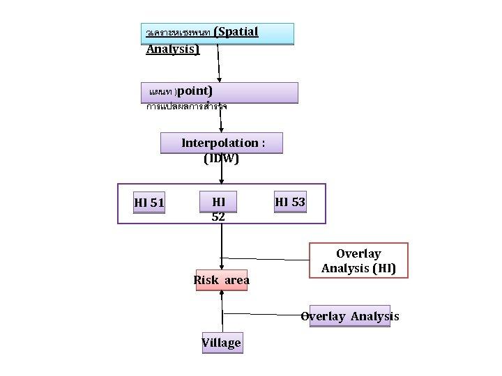 วเคราะหเชงพนท (Spatial Analysis) แผนท )point) การแปลผลการสำรวจ Interpolation : (IDW) HI 51 HI 52 Risk