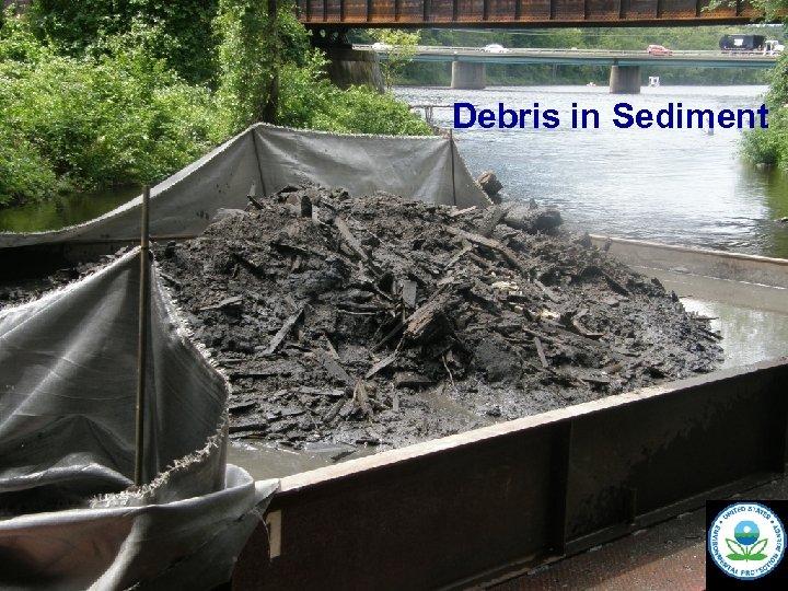 Debris in Sediment