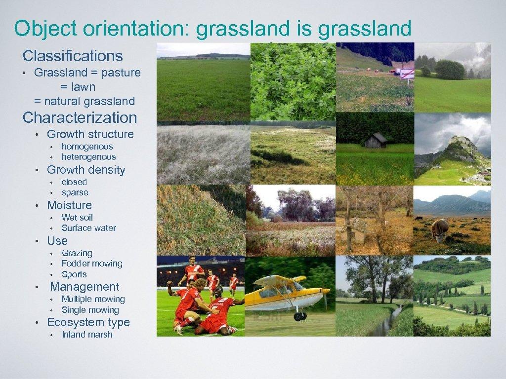 Object orientation: grassland is grassland Classifications • Grassland = pasture = lawn = natural