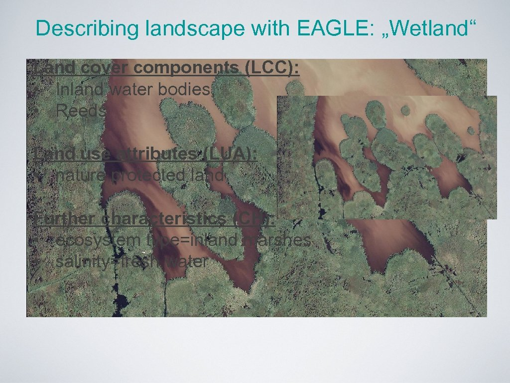 """Describing landscape with EAGLE: """"Wetland"""" Land cover components (LCC): • Inland water bodies, •"""