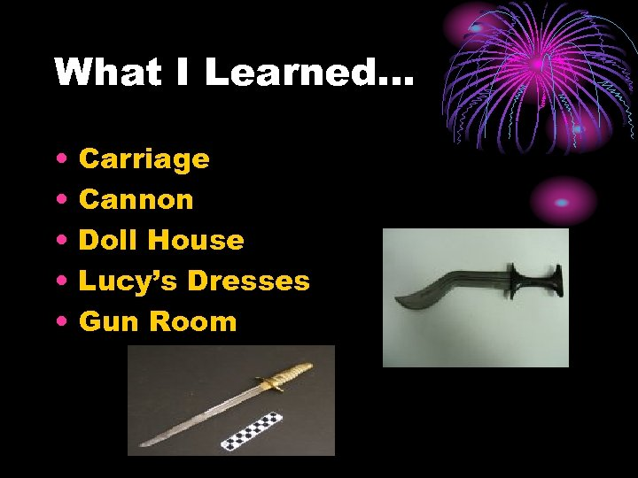 What I Learned… • • • Carriage Cannon Doll House Lucy's Dresses Gun Room