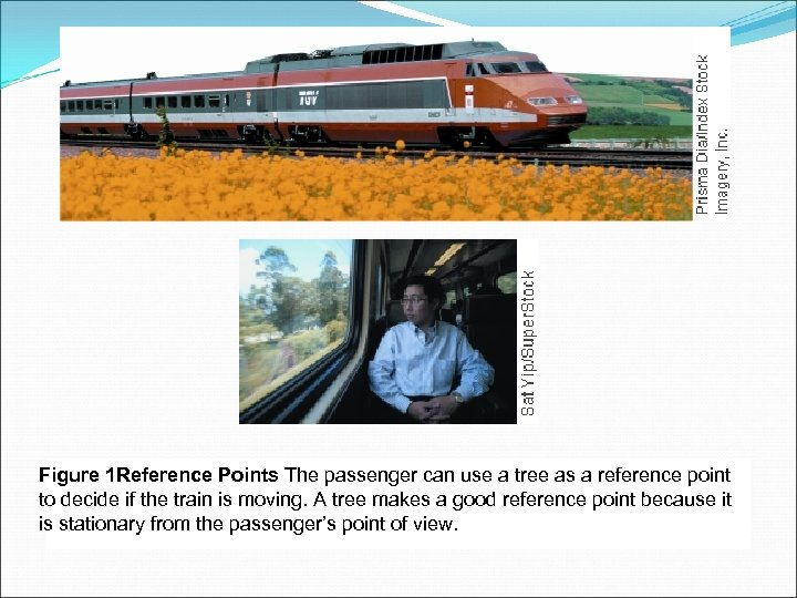 Figure 1 Reference Points The passenger can use a tree as a reference point