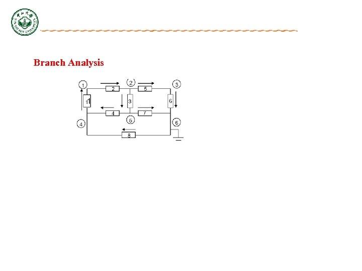 Branch Analysis