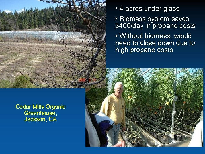 • 4 acres under glass • Biomass system saves $400/day in propane costs