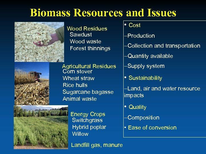 Biomass Resources and Issues Wood Residues Sawdust Wood waste Forest thinnings • Cost –Production