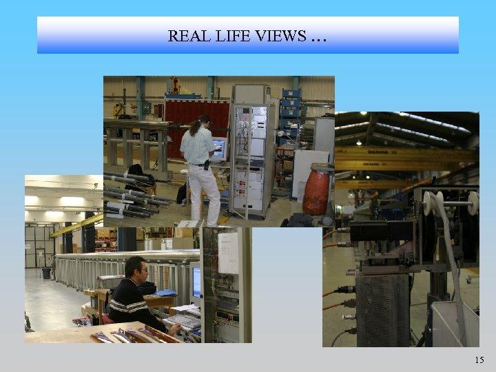 REAL LIFE VIEWS … 15
