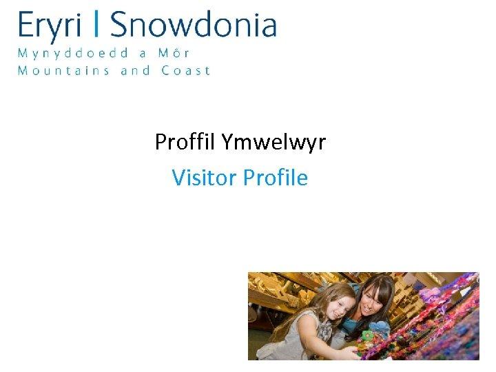 Proffil Ymwelwyr Visitor Profile