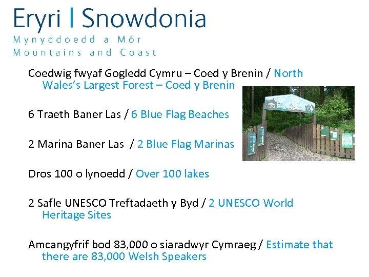 Coedwig fwyaf Gogledd Cymru – Coed y Brenin / North Wales's Largest Forest –