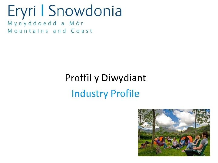 Proffil y Diwydiant Industry Profile