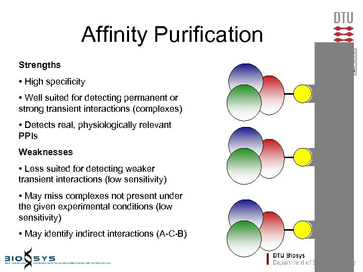 Affinity Purification Strengths • High specificity • Well suited for detecting permanent or strong