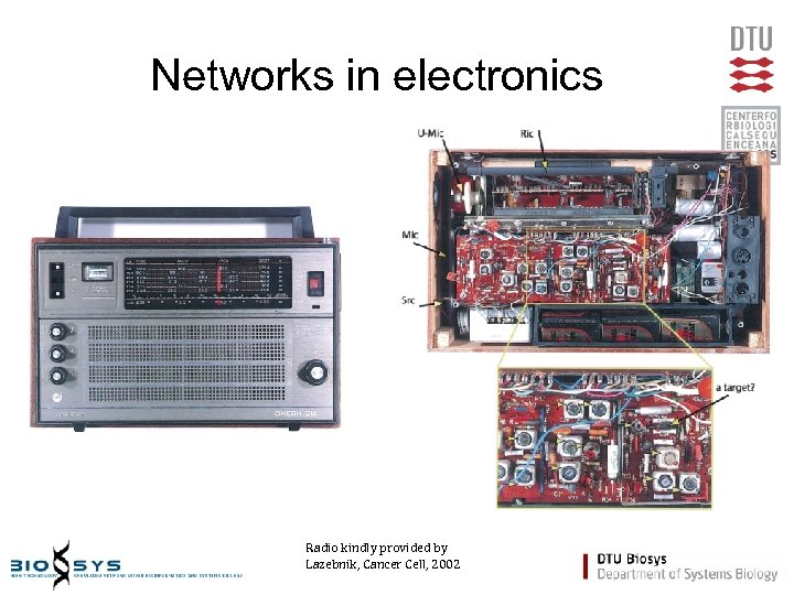 Networks in electronics Radio kindly provided by Lazebnik, Cancer Cell, 2002