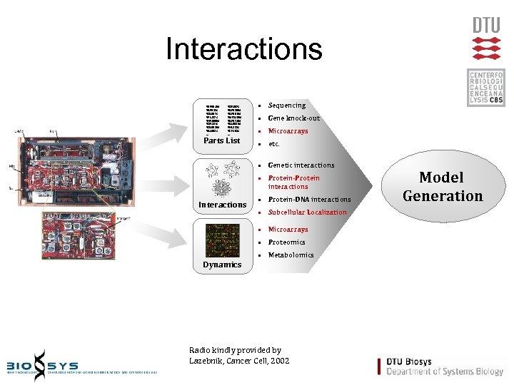 Interactions YER 001 W YBR 088 C YOL 007 C YPL 127 C YNR