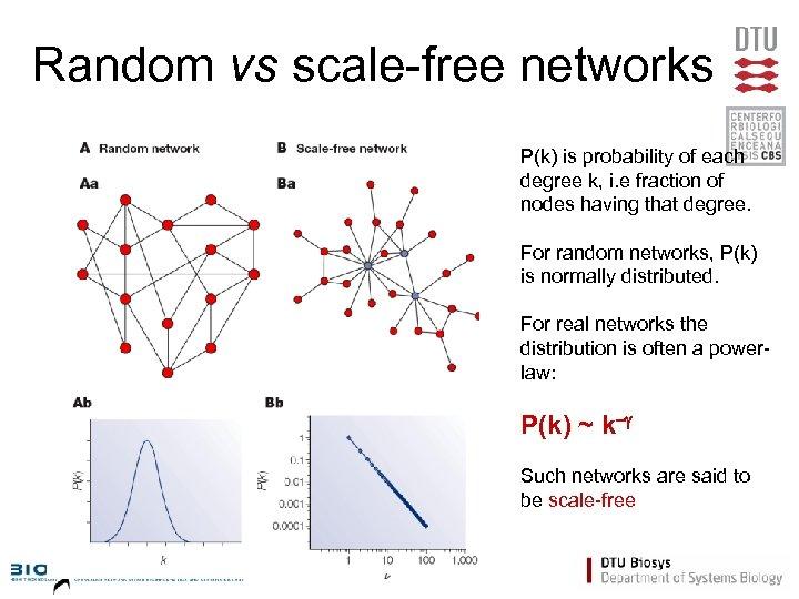 Random vs scale-free networks P(k) is probability of each degree k, i. e fraction