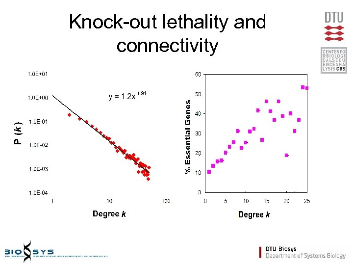 Knock-out lethality and connectivity