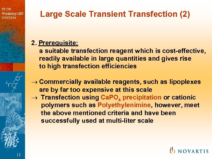 PPCW Workshop NIH 3/28/2004 Large Scale Transient Transfection (2) 2. Prerequisite: a suitable transfection