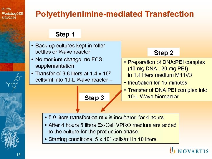 PPCW Workshop NIH 3/28/2004 Polyethylenimine-mediated Transfection Step 1 • Back-up cultures kept in roller