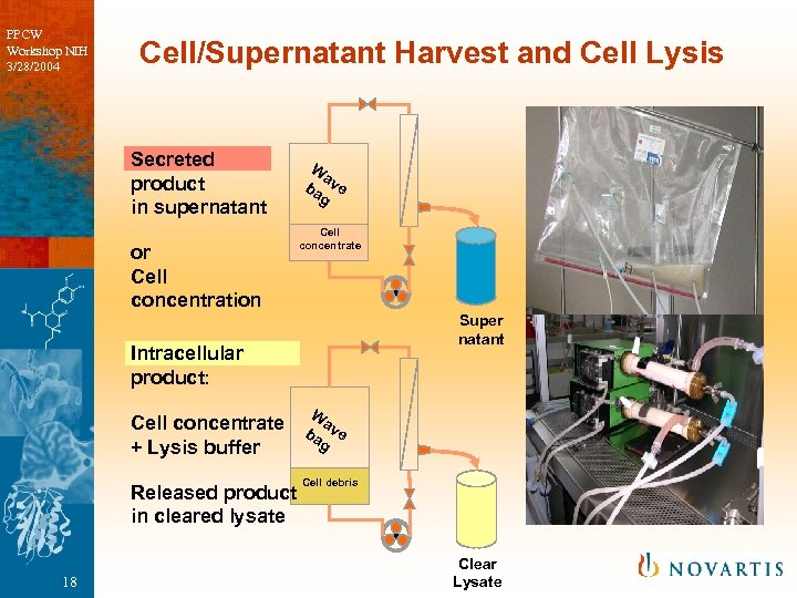 PPCW Workshop NIH 3/28/2004 Cell/Supernatant Harvest and Cell Lysis Secreted product in supernatant or