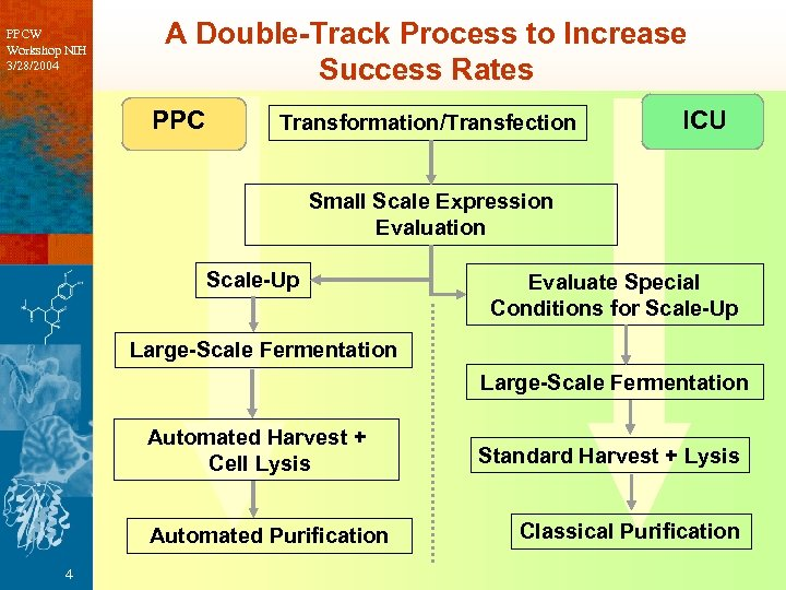 PPCW Workshop NIH 3/28/2004 A Double-Track Process to Increase Success Rates PPC Transformation/Transfection ICU