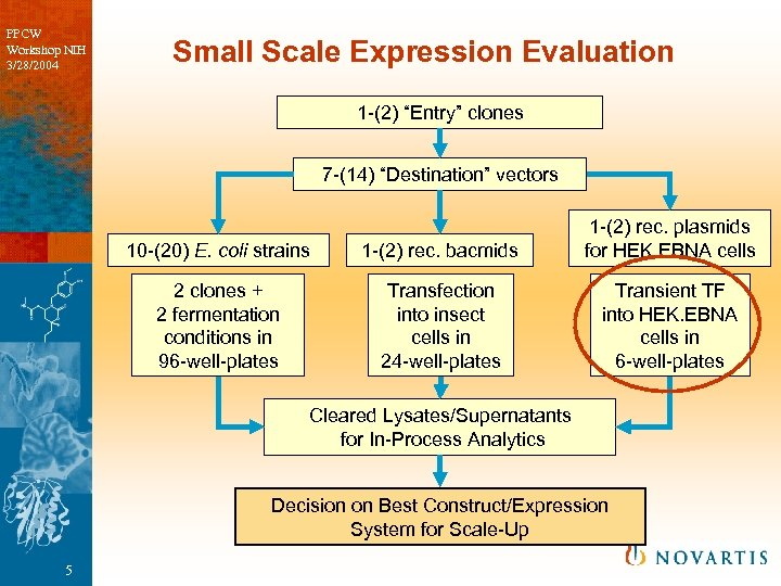 "PPCW Workshop NIH 3/28/2004 Small Scale Expression Evaluation 1 -(2) ""Entry"" clones 7 -(14)"