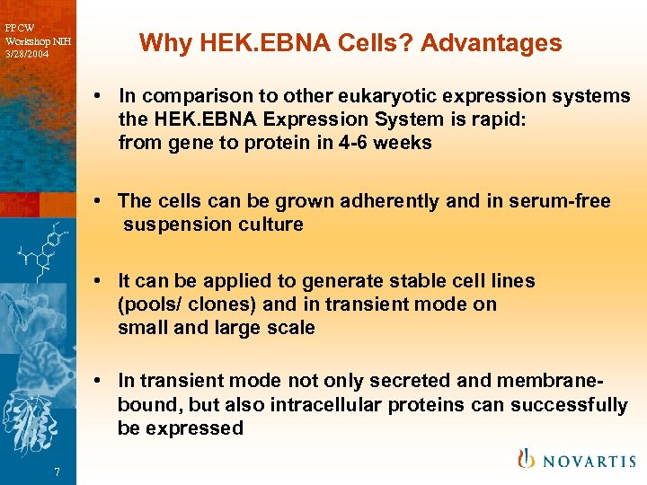 PPCW Workshop NIH 3/28/2004 Why HEK. EBNA Cells? Advantages • In comparison to other