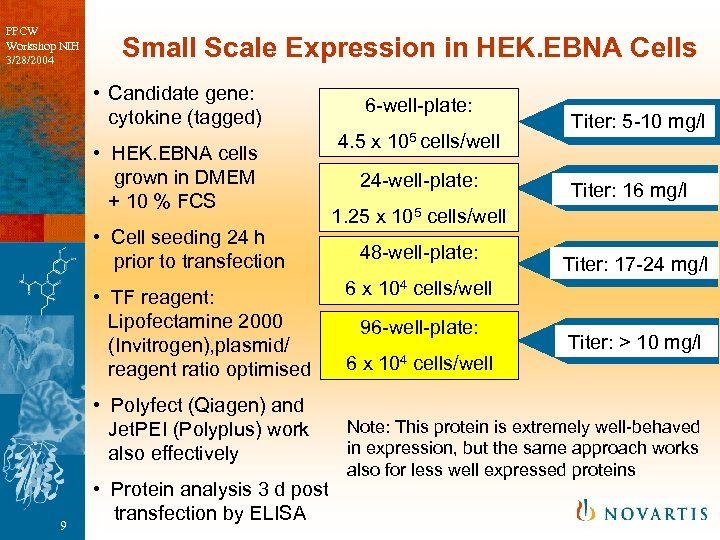 PPCW Workshop NIH 3/28/2004 Small Scale Expression in HEK. EBNA Cells • Candidate gene: