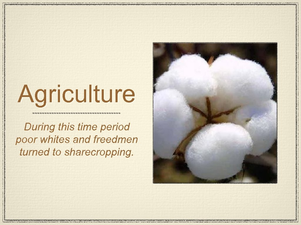 Agriculture During this time period poor whites and freedmen turned to sharecropping.