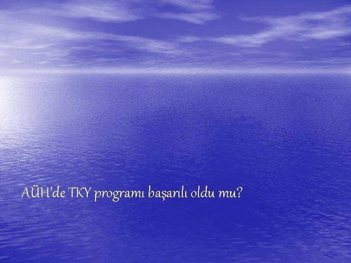 AÜH'de TKY programı başarılı oldu mu?