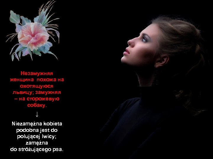 Незамужняя женщина похожа на охотящуюся львицу; замужняя – на сторожевую собаку. ↓ Niezamężna kobieta